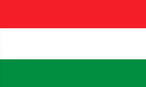 Lernen Ungarisch in Sprachschule Aktiv Zürich